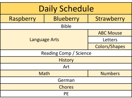 Our Daily Schedule | Berry Mama Drama